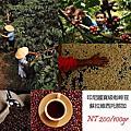 Coffee Talk 印尼咖啡