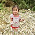 1030419賞油桐花之旅明德水庫