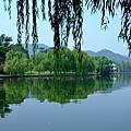 Day 4 - 若把西湖比西子,淡妝濃抹總相宜 - 杭州→上海