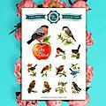 月曆貼紙【LikeBird 小鳥系列】月曆完售