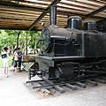 2011暑假少年遊--到太平山、羅東看樹去!