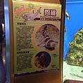 遠雄海洋公園與遠雄悅來飯店
