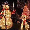 2008-12-24 聖誕燈飾