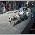 埃及交通工具