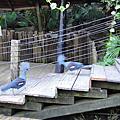 2010-10-17綠世界生態農場