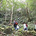 2008.01.19馬武督探索森林-羅馬公路