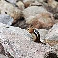 201308科羅拉多與洛磯山脈國家公園
