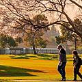 20180118Regional Park, CA