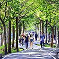 20200416神岡潭雅神綠園道