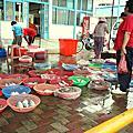 101023龍鳳漁港