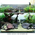 165. Aquarium World