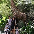 2013.10.13台北市立動物園