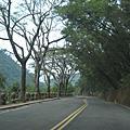 20090403高雄縣茂林國家風景區