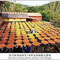 2017.10.28新竹柿餅、芙洛麗飯店