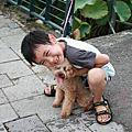 9806‧府城&中興新村吃美食
