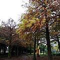20131229-1230調色盤民宿