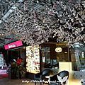 1001227_櫻之京都