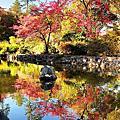 101世界初第一季福壽山武陵農場三日遊_Day2