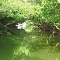 1021001_台南-台江國家公園