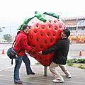 2_10_2007_顯盛小組採草莓