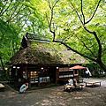 2015/06京阪神七日遊day4-7