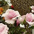 2011.02.21玫瑰展