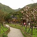 2006/03 茶壺山。燦光寮山