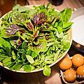 花蓮美食【一旬野鍋13路】當令新鮮在地野菜,日式,文青,火鍋