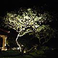 2011.2.9巴里島 第1天//♥