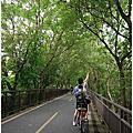  台中 后豐鐵馬道+東豐自行車綠廊