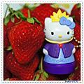 阿湧伯の果園 ☆大湖草莓.無子桶柑.養生黑糖薑片☆