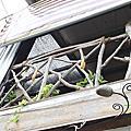 20110709高雄屏東文化原住民之旅