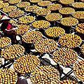 20131013新埔柿餅節
