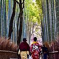 嵐山|天龍寺