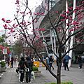 2011台北國際書展我愛動漫2館遊