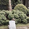 06台中_景觀設計_完工照