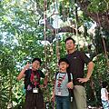 1080803小小攀樹師@芝山文化生態綠園