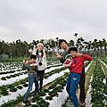 1090222找到莓農場