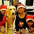 103/12/16 居家。怖置小小聖誕樹