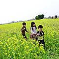 104/01/03 彰化埔鹽。南新彩繪村(花海節)
