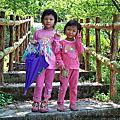 3月20日我們去爬梅嶺觀音步道好景盡收眼裡