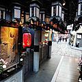 2014 日本賞楓冬之旅