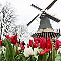 荷蘭自助遊(2015.03.22~25)