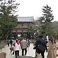 關西鐵腿五日遊-奈良
