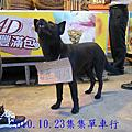 2010.10.23南頭集集單車行