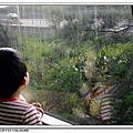 2011/06/08 內壢,桃園