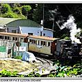2012/04/12 阿里山-5 阿里山-嘉義玉山旅社