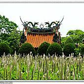 2015/09/09 瑞井社區農村風相簿封面
