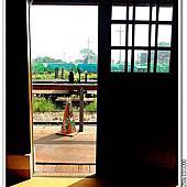 2015/09/23 虎尾,綠色隧道,蜜蜂故事館相簿封面