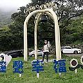 2020.03.31中正山.竹子湖海芋